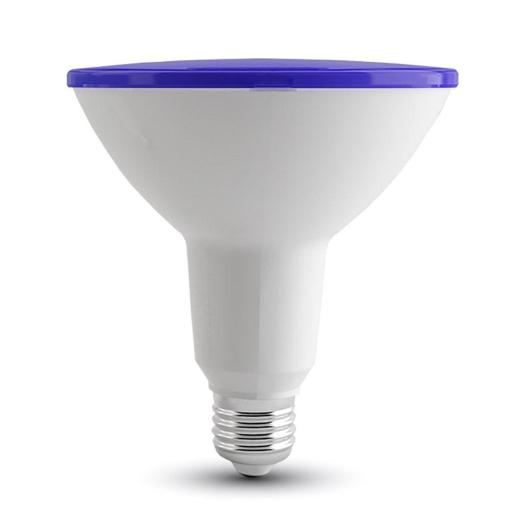 Bec LED - 15W, PAR38, E27, IP65, Albastru