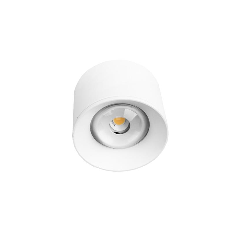Corp de Iluminat Rotund Aplicat 12W, Lumina Naturala (4000K) IP44 -FTS R1605